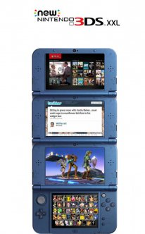 New Nintendo 3DS troll 2