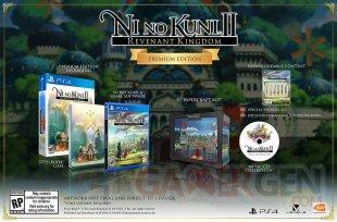Ni no Kuni II premium Edition