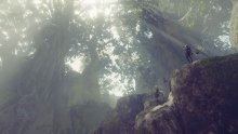 NieR-Automata-Forest-Zone-01-29-11-2016