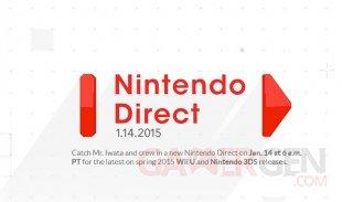 Nintendo Direct 14.01.2014