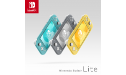 Nintendo Switch Lite hardware 130