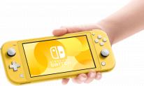 Nintendo Switch Lite hardware 1