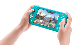 Nintendo Switch Lite hardware 2