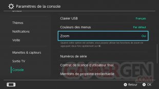 Nintendo Switch MAJ 8.0.0 Option ZOOM tuto images (8)