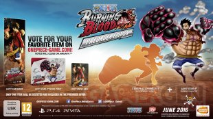 One Piece Burning Blood preorder edition 1