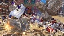 One Piece Pirate Warriors 3 22.12.2014  (1)