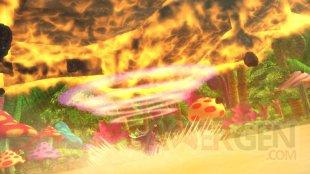 One Piece Pirate Warriors 3 22.12.2014  (8)