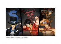 One Piece Pirate Warriors 3 collector PS4 (1)