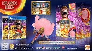 One Piece Pirate Warriors 3 edition collector bonus (1)