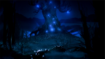 Ori and the Blind Forest 2014 09 17 14 007
