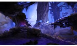 Ori and the Blind Forest 2014 09 17 14 008