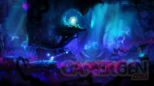 Ori and the Blind Forest Definitive Edition 01 03 2016 screenshot (7)