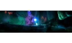 Ori and the Blind Forest Definitive Edition head