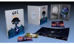 Ori and the Blind Forest Definitive Edition version physique