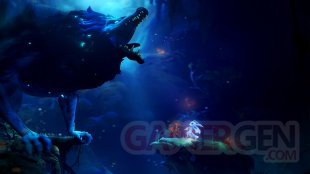 Ori and the Will of the Wisps images (1)