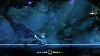 ori blind forest screenshot 21 01 2015  (4)