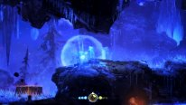 ori blind forest screenshot 21 01 2015  (5)