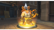 Overwatch Insurrection Torb