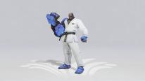 Overwatch Jeux d'été 2020 skins Karaté