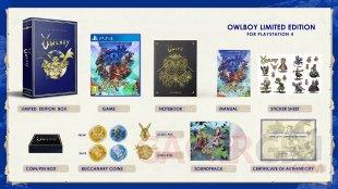 Owlboy Limited Edition 03 05 05 2018