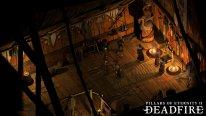 Pillars of Eternity II Deadfire screenshot 10