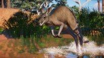 Planet Zoo Pack Australia DLC images (4)