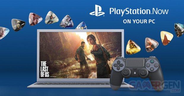 PlayStation 4 PS4 USB adaptator adaptateur PSNow pic hardware PC 3