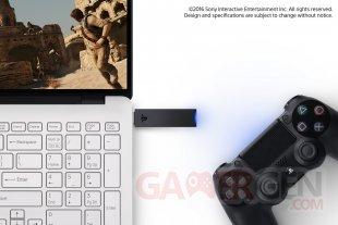 PlayStation 4 PS4 USB adaptator adaptateur PSNow pic hardware PC
