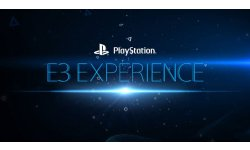 PlayStation E3 Experience 29.05.2014