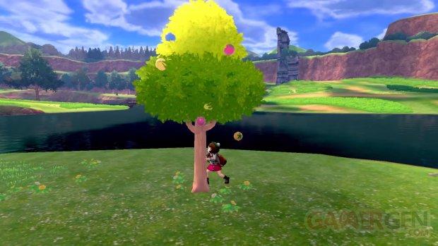 Pokémon Epee Bouclier 03 17 06 2019