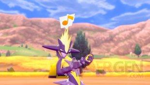 Pokémon Epée Bouclier 05 05 02 2020
