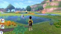 Pokémon Epée Bouclier Ile solitaire Armure test 02 24 06 2020