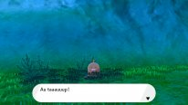 Pokémon Epée Bouclier Ile solitaire Armure test 05 24 06 2020