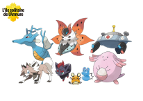 Pokémon Épée Bouclier Ile Solitaire de l'Armure 20