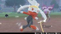 Pokémon Epée Bouclier test 04 29 11 2019
