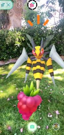 Pokémon GO Méga Évolution 6