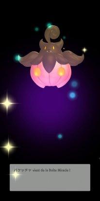 Pokémon HOME 28 01 2020 pic (4)