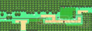 Pokémon Version Diamant et Perle Route 201 Originale 08 01 2021