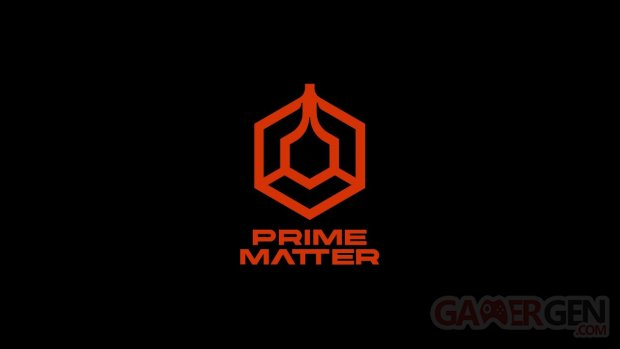 Prime Matter head logo 2021