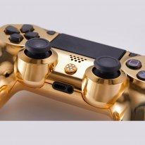 PS4 DualShock 4 or 14 000 dollars image.jpg (2).
