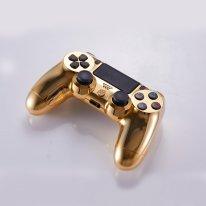 PS4 DualShock 4 or 14 000 dollars image.jpg (3).