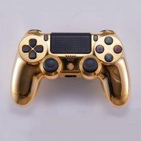PS4 DualShock 4 or 14 000 dollars image.jpg (4).