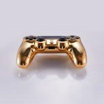 PS4 DualShock 4 or 14 000 dollars image.jpg (8).