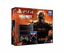 PS4 PlayStation 4 collector Call of Duty Black Ops III 22 09 2015 (3)
