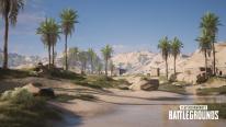 PUBG PlayerUnknown's Battlegrounds 16 01 2020 pic 5