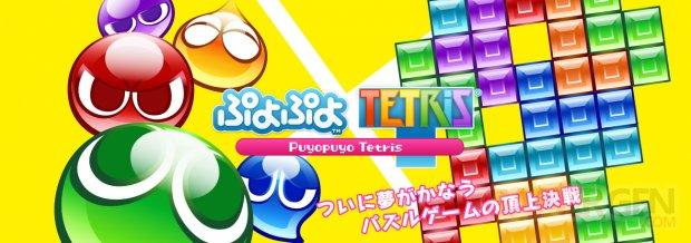 Puyopuyo Tetris 12.09 (3)