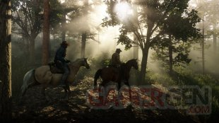 Red Dead Redemption 2 07 05 18 (5)