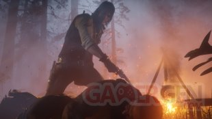 Red Dead Redemption 2 07 05 18 (6)