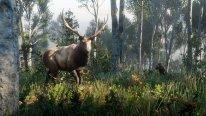 Red Dead Redemption 2 26 09 2018 screenshot 1