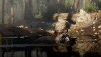Red Dead Redemption 2 29 09 2018 screenshot (3)